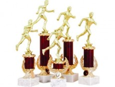 Statuettes, wide choice on wholesale prices from the best producers. And also cups, medals, expense/pl materials. Souvenir products are marks, medals, corporate attribute.